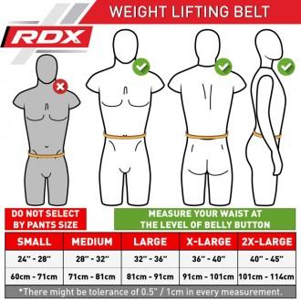 "RDX 4"" kožený fitness opasek"