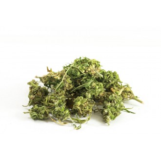 Zelená Země Konopná směs Premium - 30g