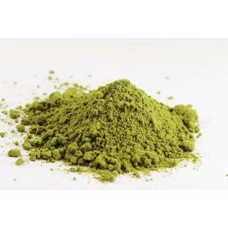 Zelená Země Konopný protein 125 g - BIO